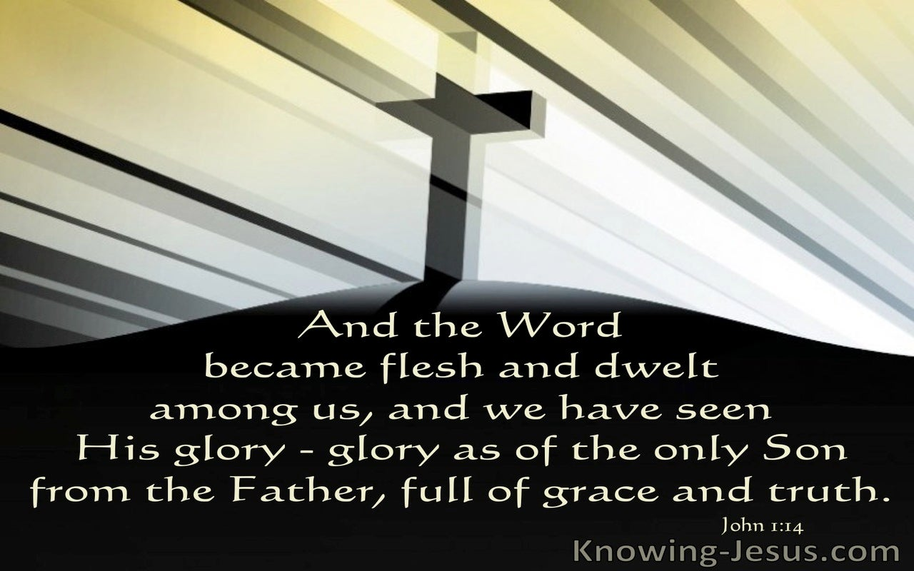 The Fullness of Grace (devotional) (black) - John 1:14