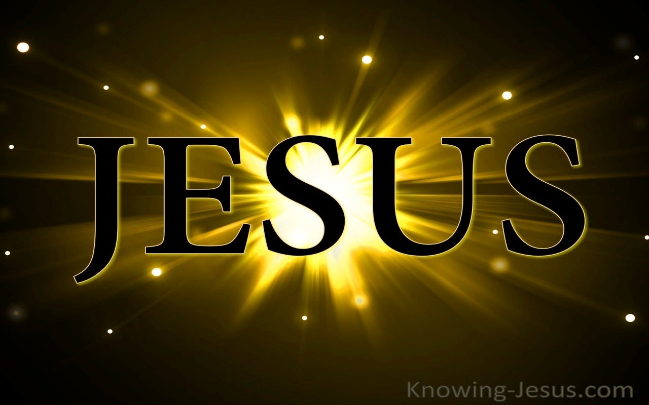 JESUS - Has Revealed God (black)