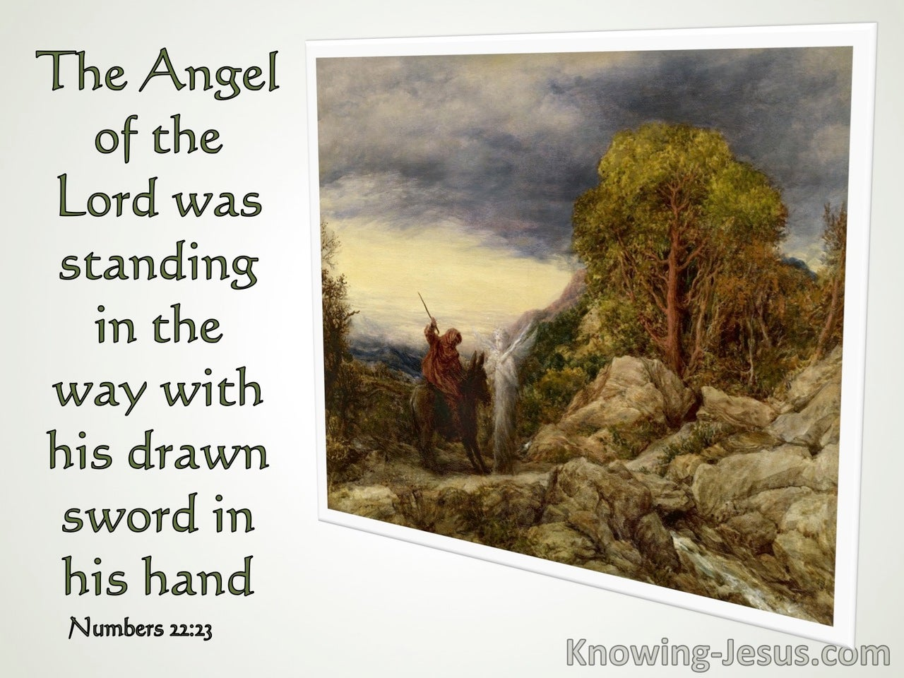 Numbers 22:23 The Donkey Saw The Angel Of The Lord (sage)