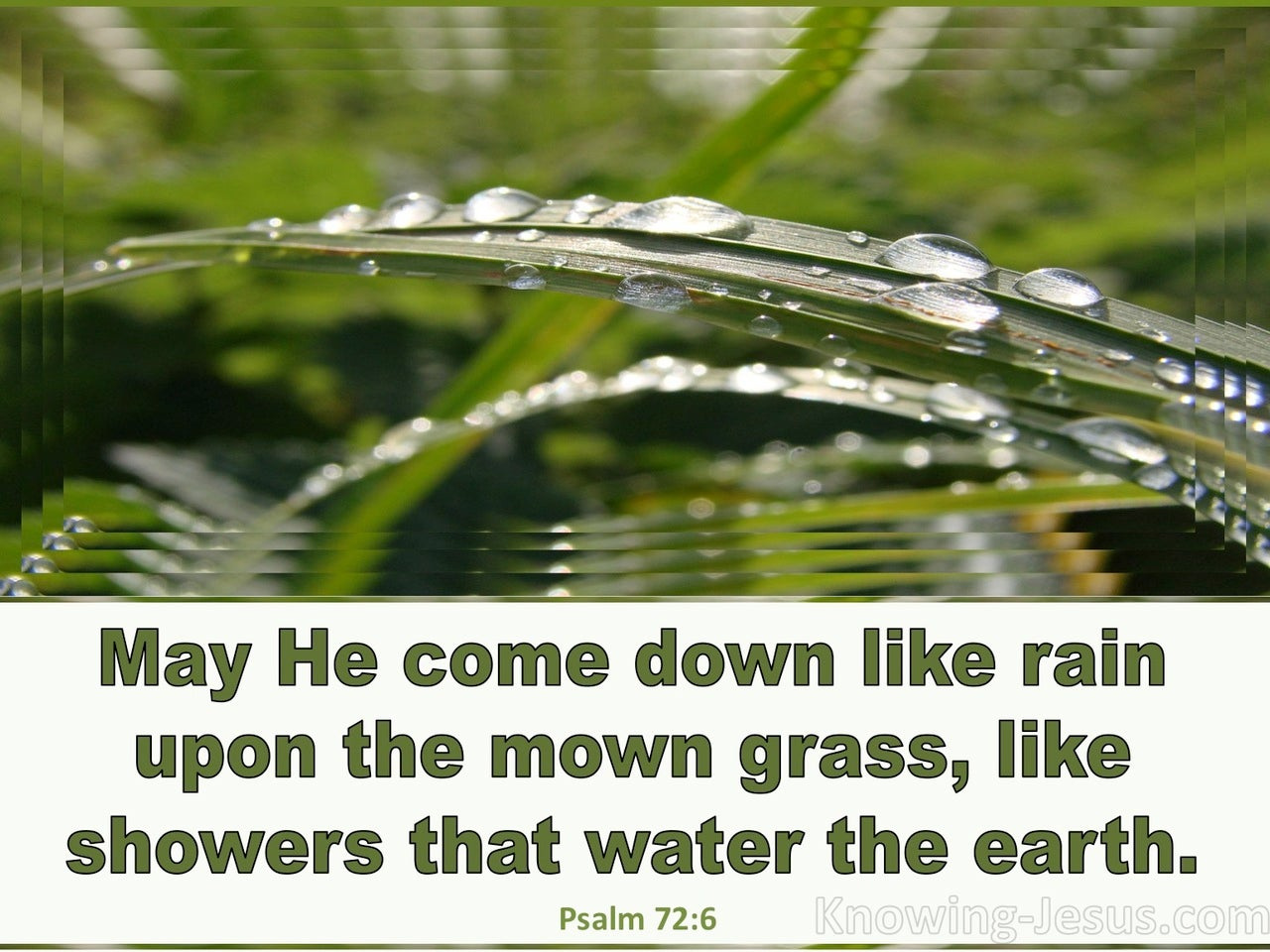 Psalm 72:6 He Is Like The Dew On The Mown Grass (sage)