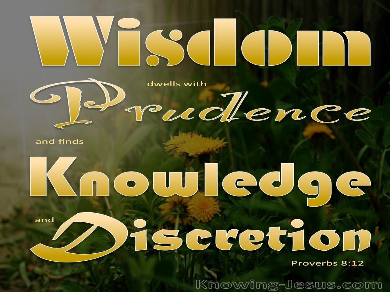 Proverbs 8:12 Wisdom Dwells With Prudence (gold)
