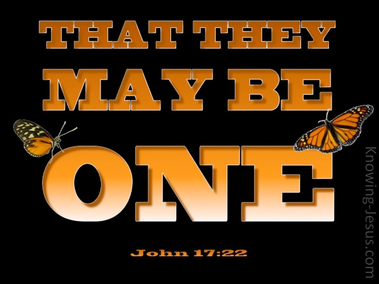 John 17:22 That They May Be One (black)