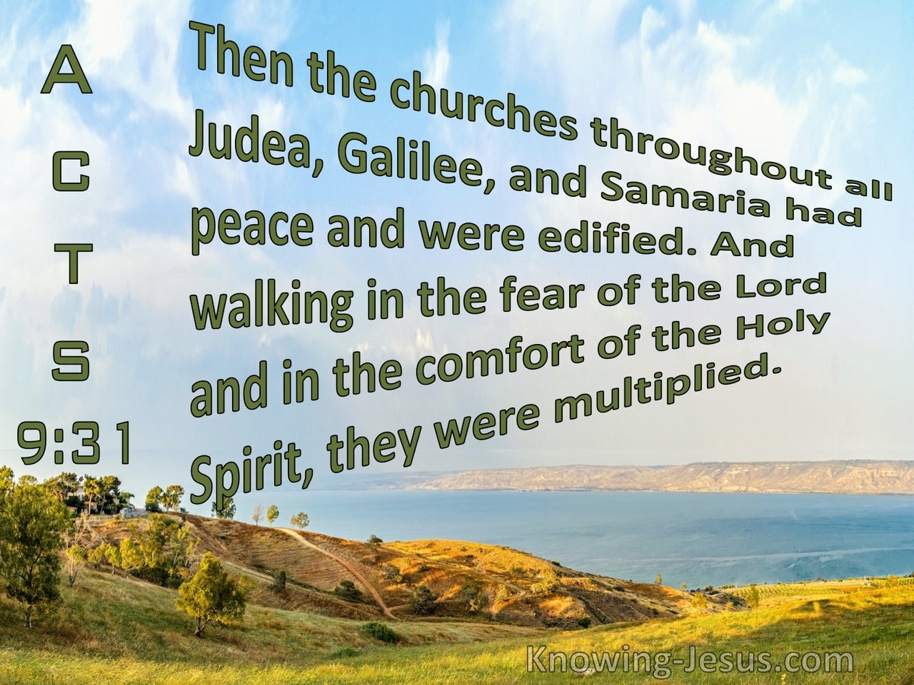 Acts 9:31 The Churches In Judea, Galilee, And Samaria Had Peace And Were Edified (green)