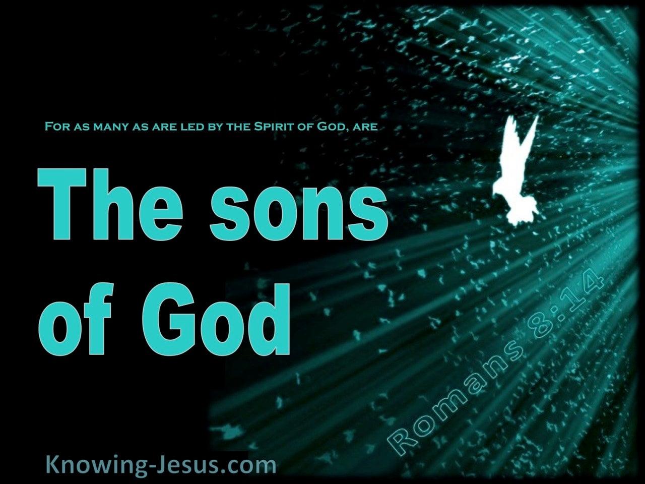 Romans 8:14 Led by the Spirit (green)