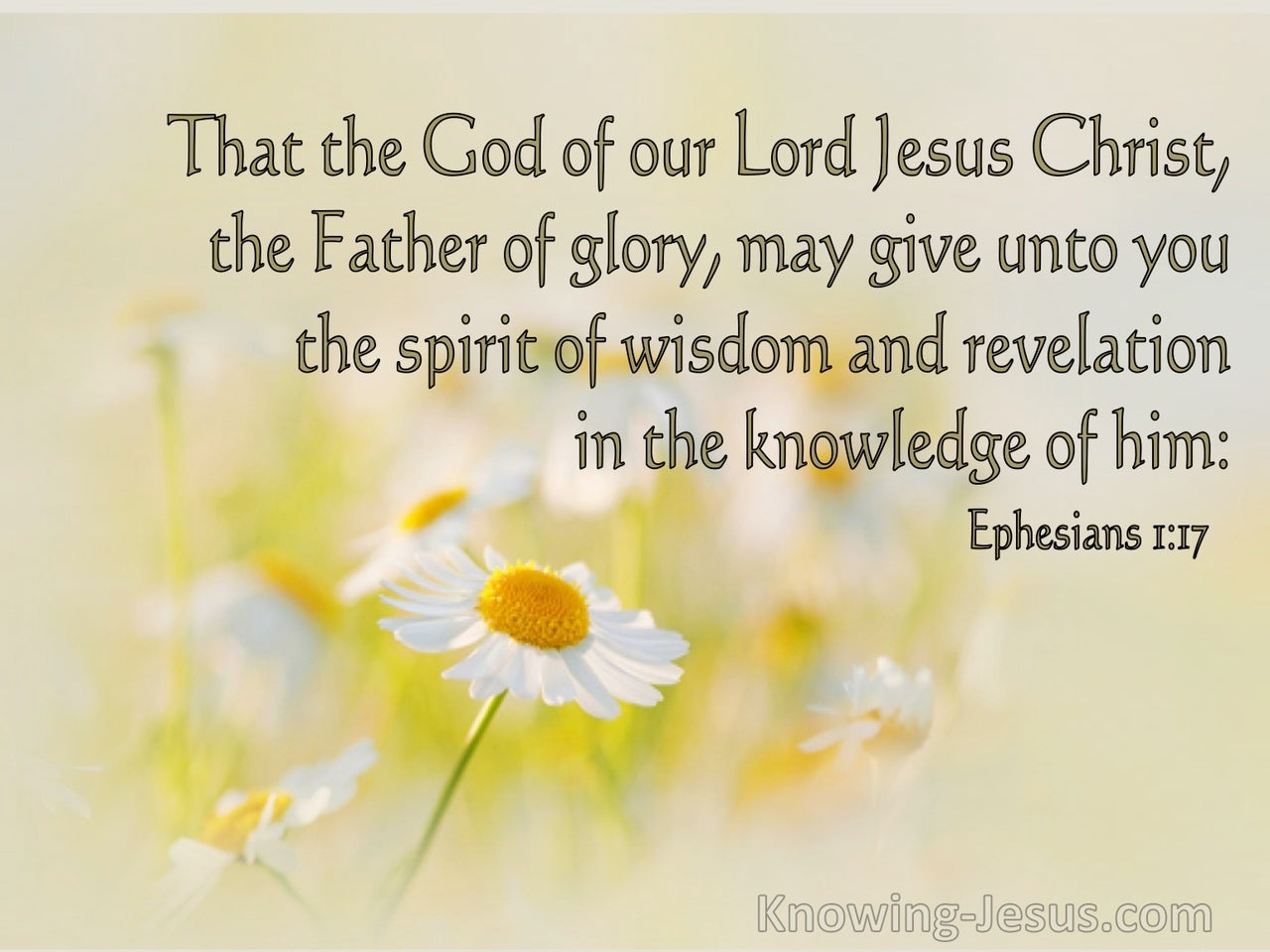 Ephesians 1:17 The God Of Our Lord Jesus Christ, The Father Of Glory (sage)