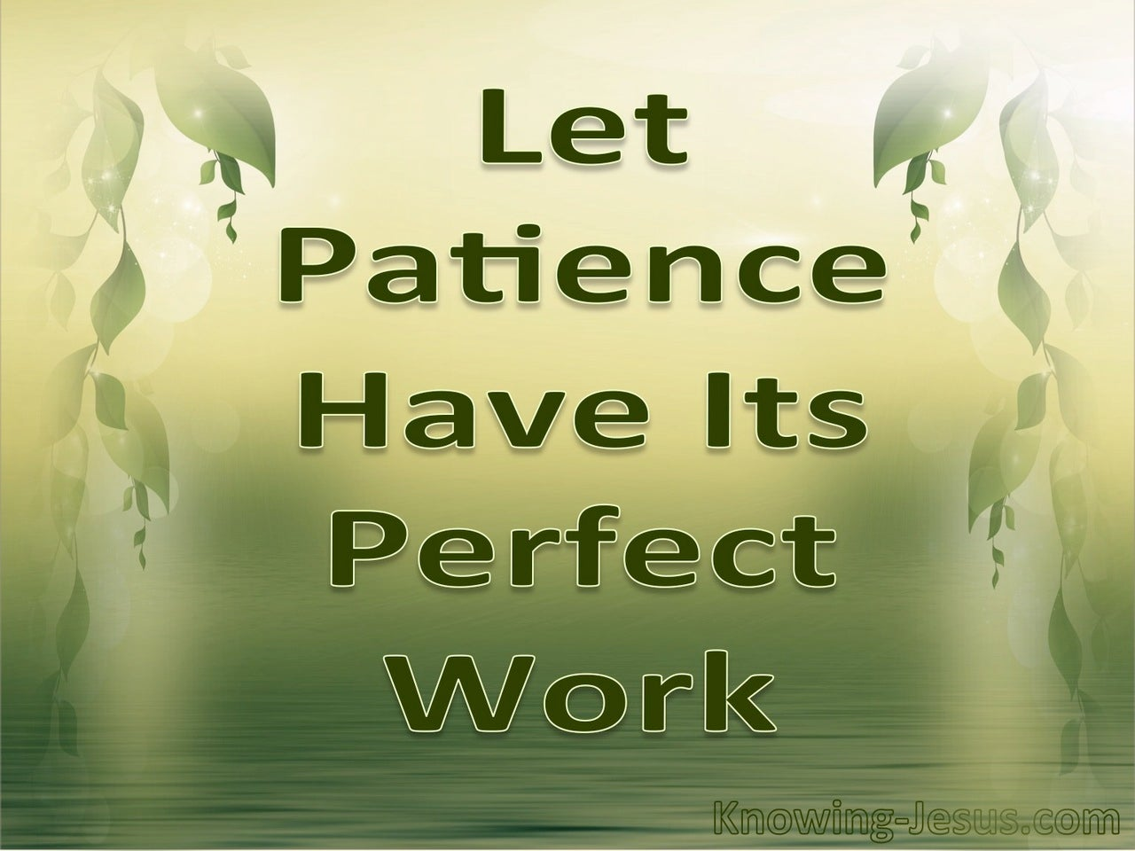 James 1:4 Let Patience Have Its Perfect Work (sage)