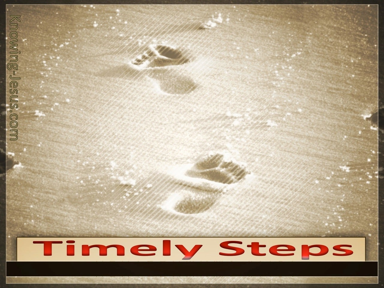 Psalm 37:23 Timely Steps (devotional)03:22 (brown)