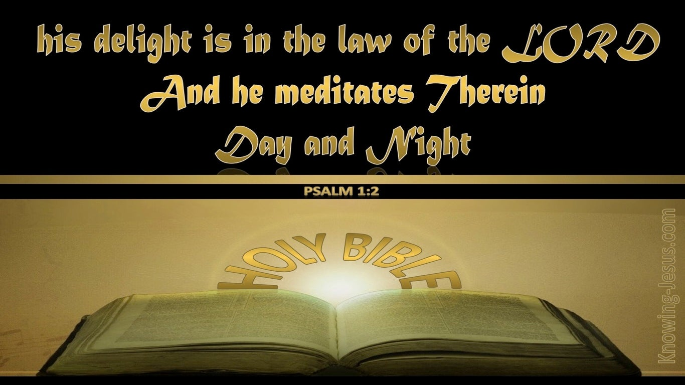 Psalm 1:2 He Delights in the Law of the Lord (gold)