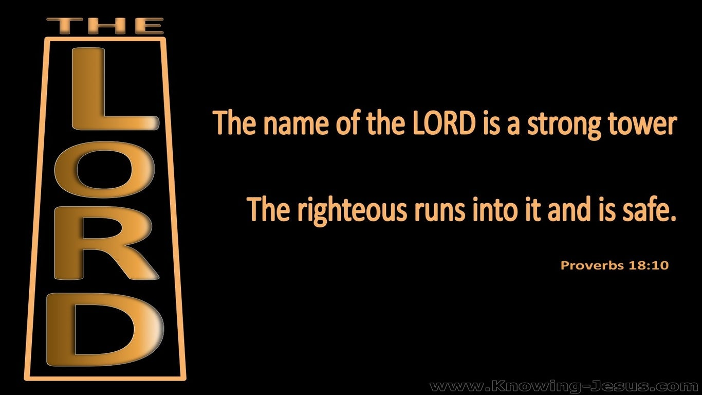 Proverbs 18:10 The Name Of The Lord Is A Strong Tower (black)