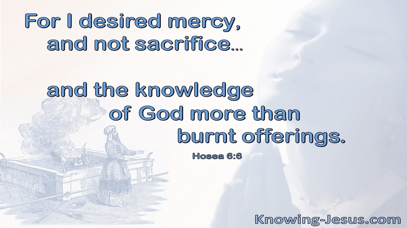 Hosea 6:6 God Desires Mercy Not Sacrifice (blue)