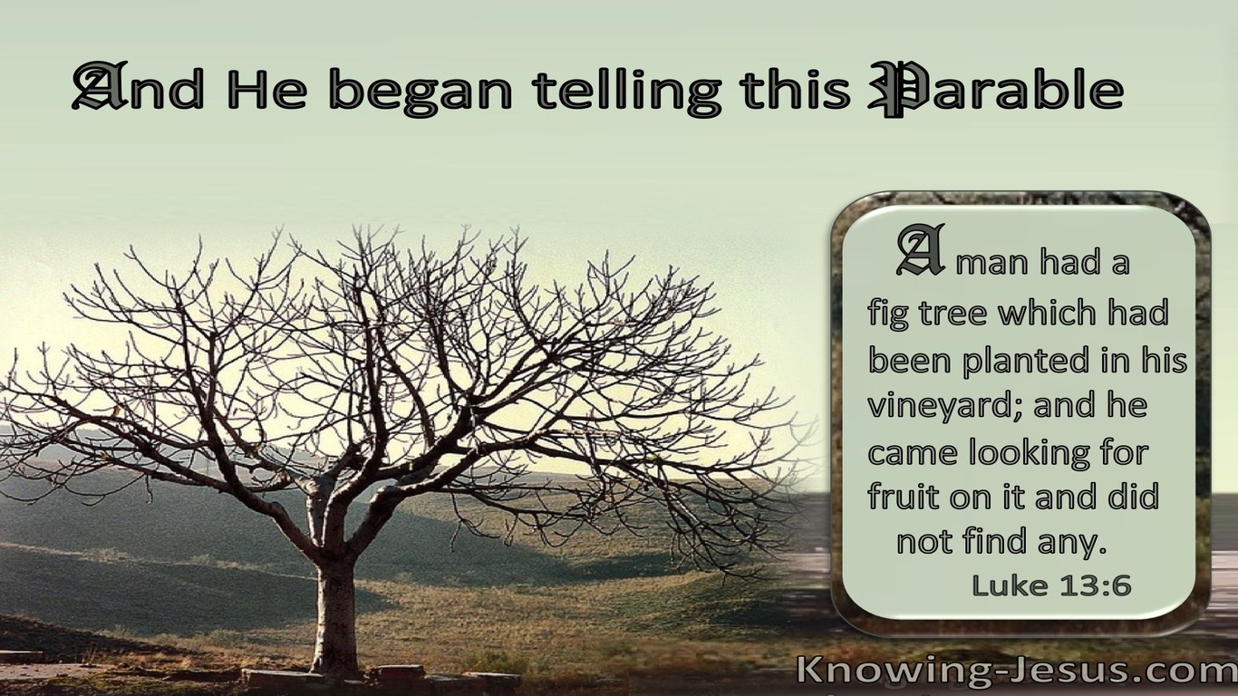 Luke 13:6 The Barren Fig Tree : He Found No Fruit (brown)