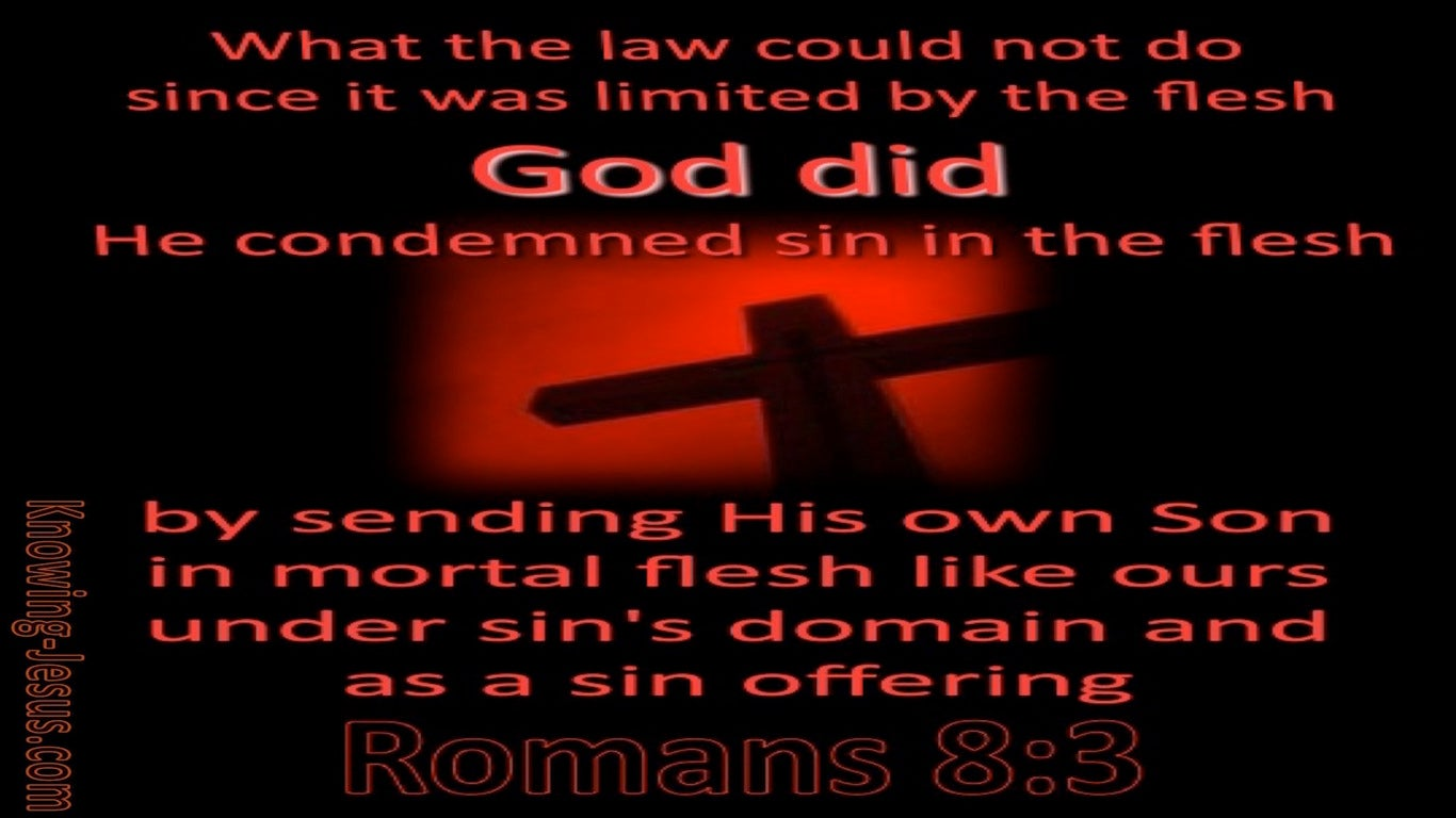 Romans 8:3 God Sent His Son As A Sin Offering (black)