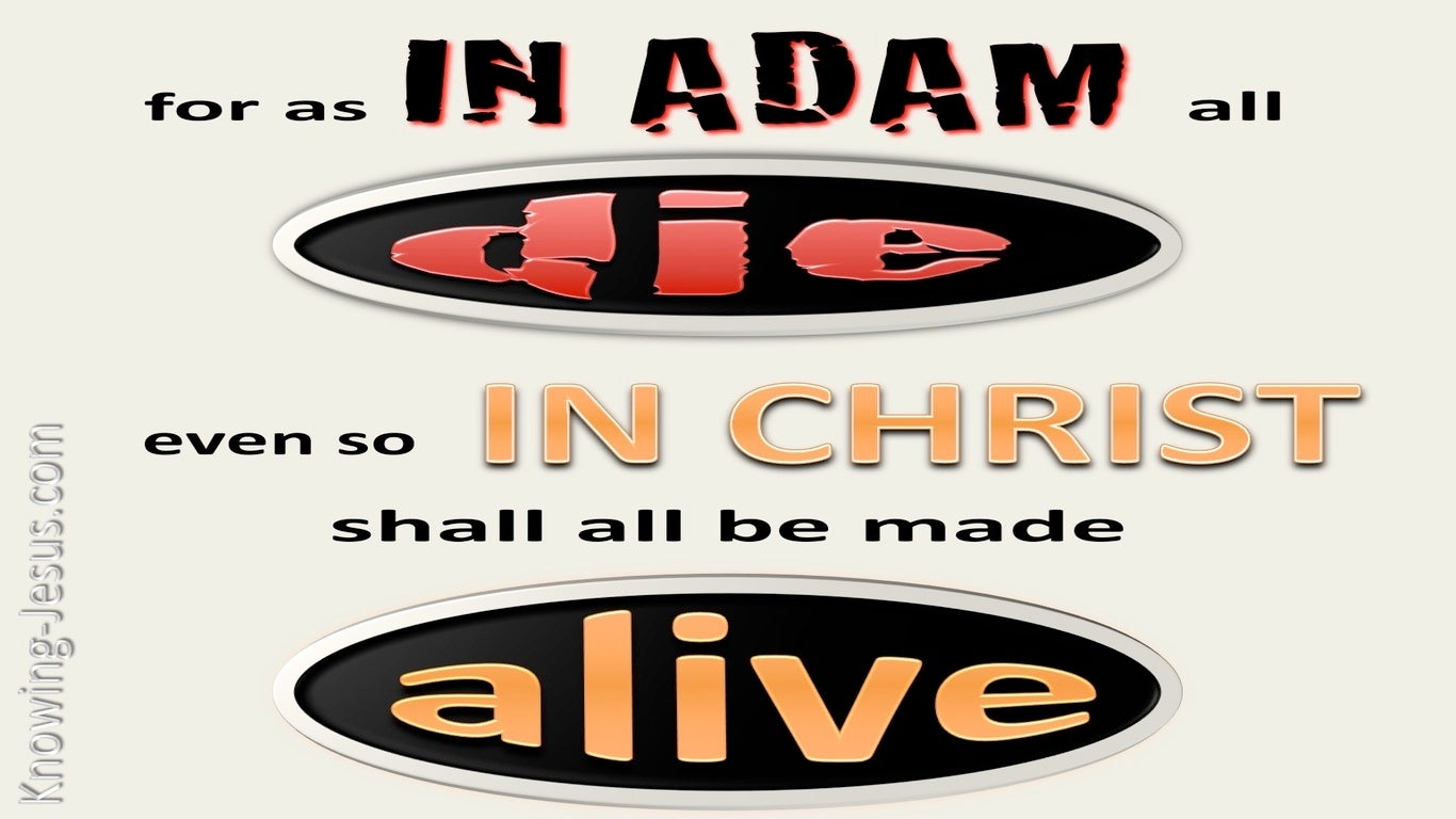 1 Corinthians 15:22 In Adam All Die, In Christ All Made Alive (beige)