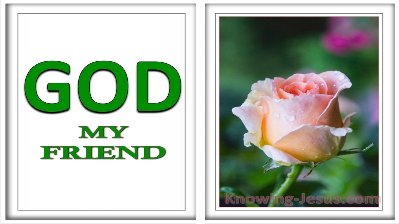 God, My Friend (devotional) (green)