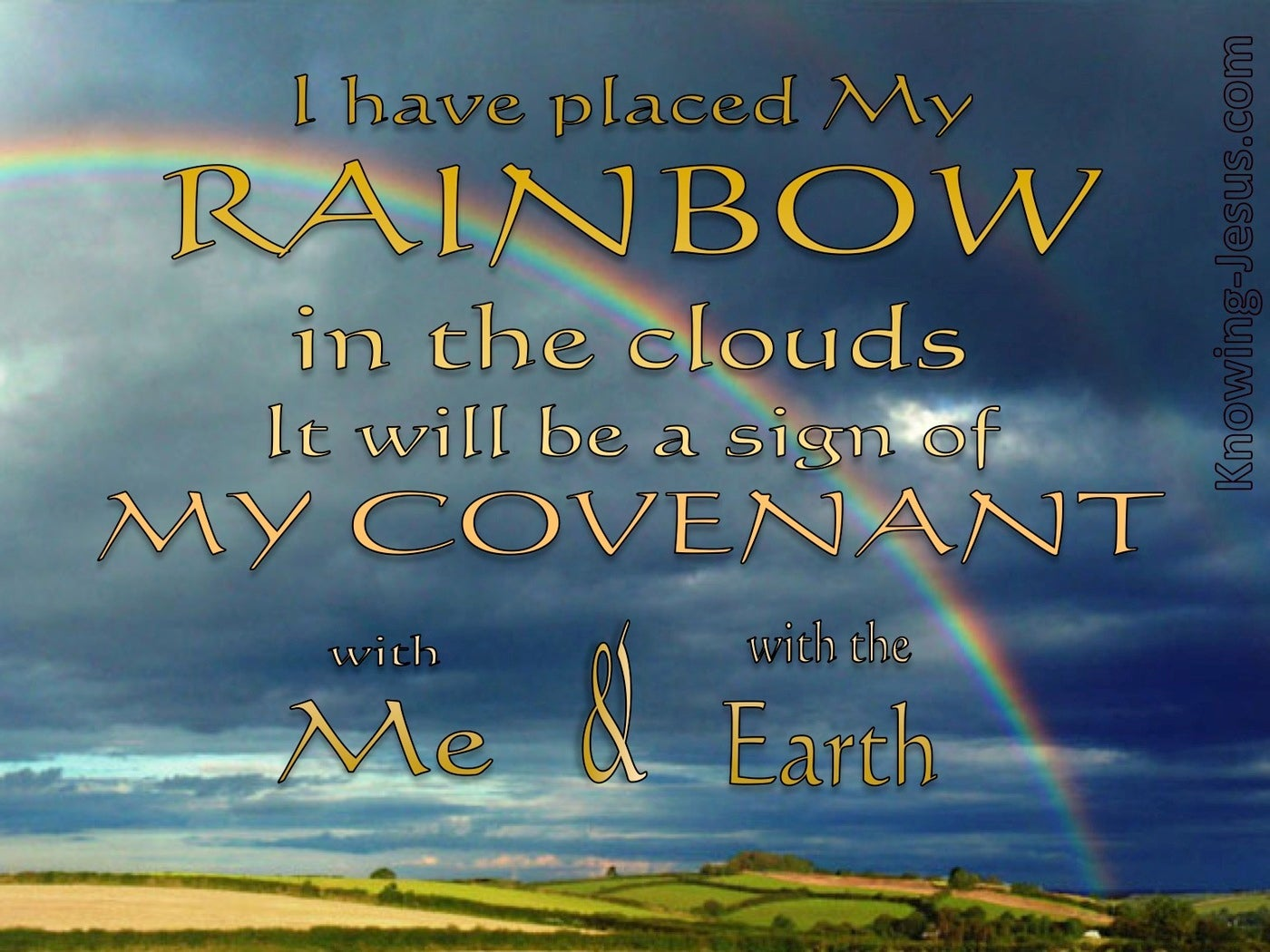 Genesis 9:13 My Bow in the Clouds (gold)