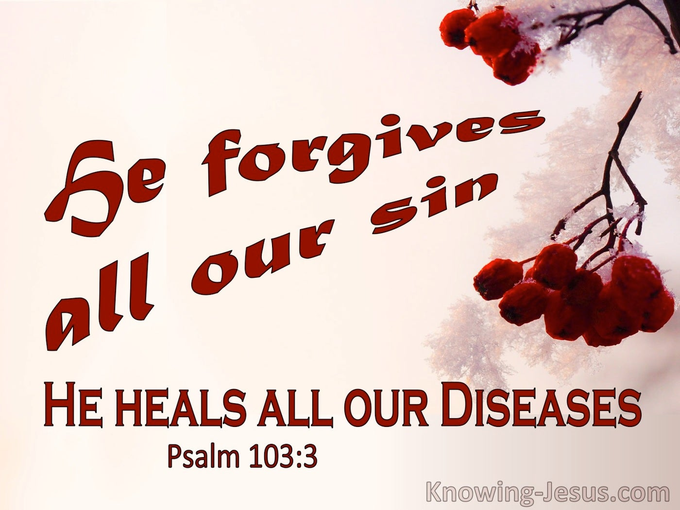 Psalm 103:3 He Forgive All Our Sin And Heals Our Diseases (pink)