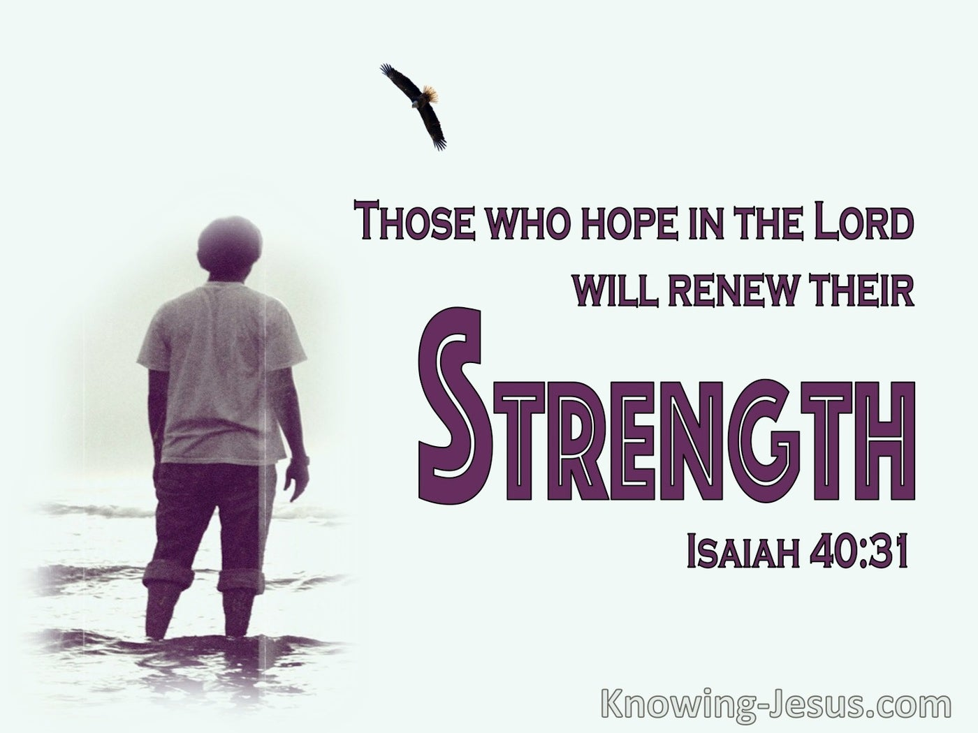 Isaiah 40:31 Those Who Hope On The Lord Shall Renew Strength (maroon)