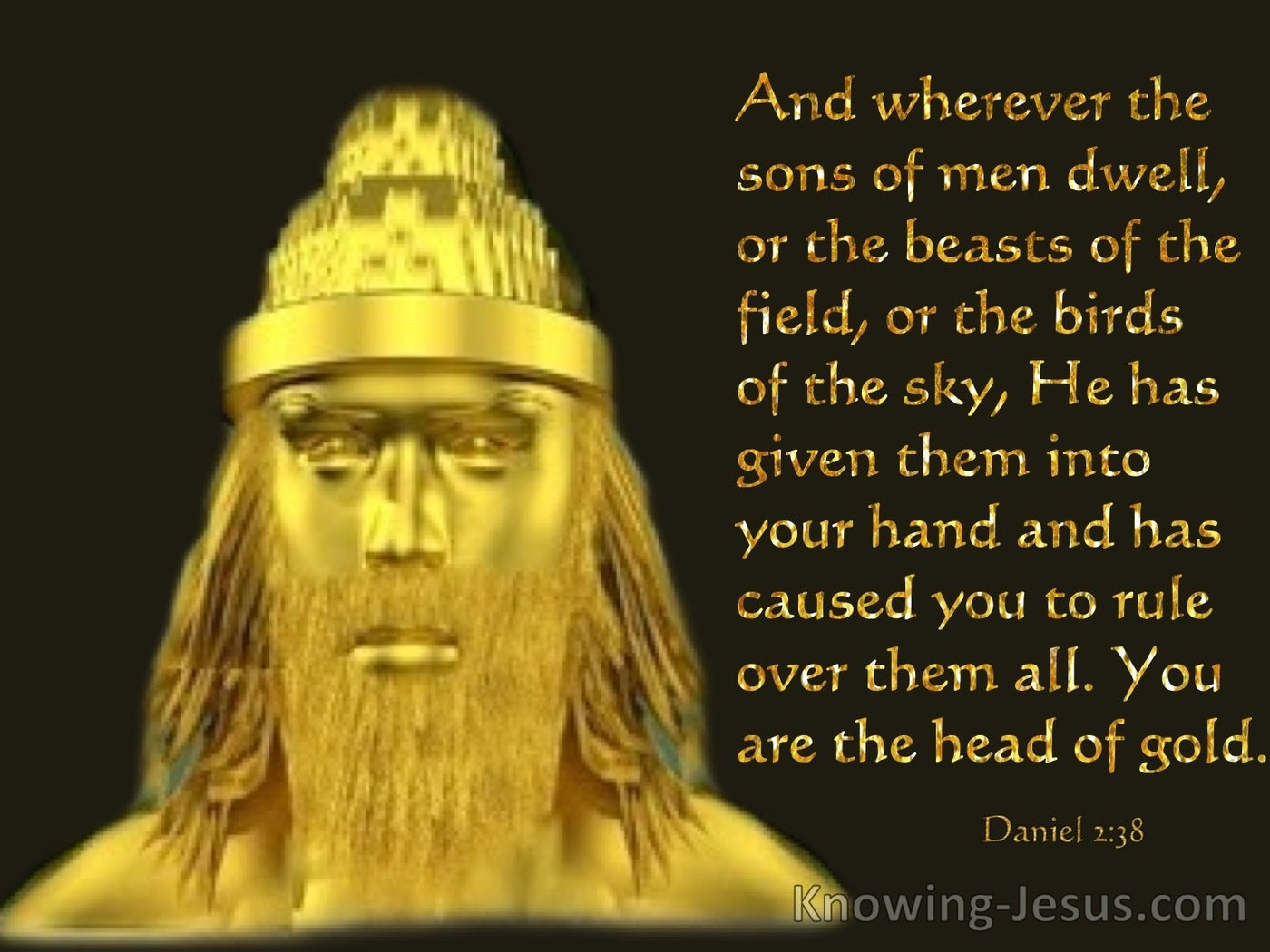 Daniel 2:38 You Are The Head Of Gold (black)