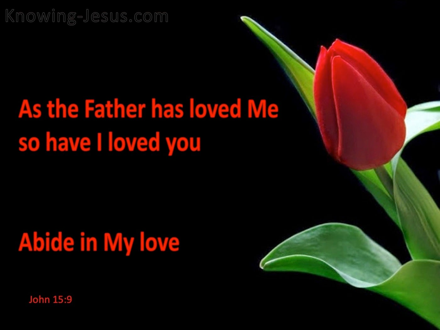 John 15:9 Abide In My Love (red)