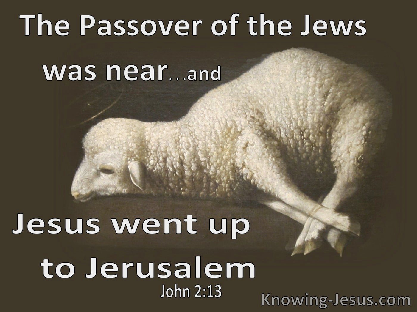 John 2:13 Passover Was Near Jesus Went To Jerusalem (brown)