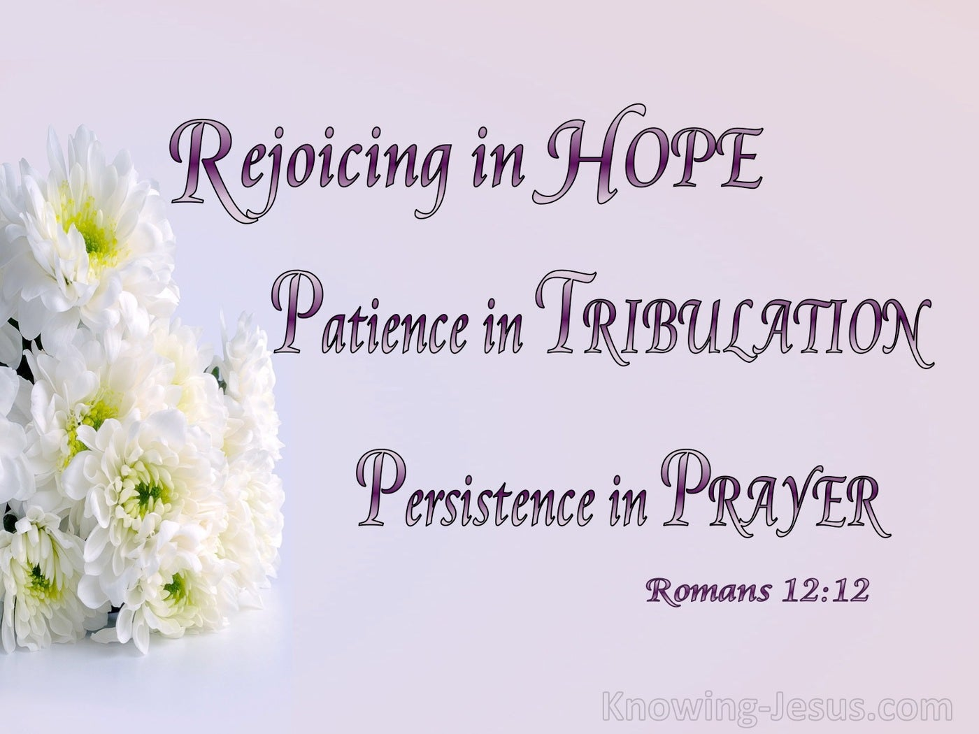 Romans 12:12 Rejoicing In Hope (pink)