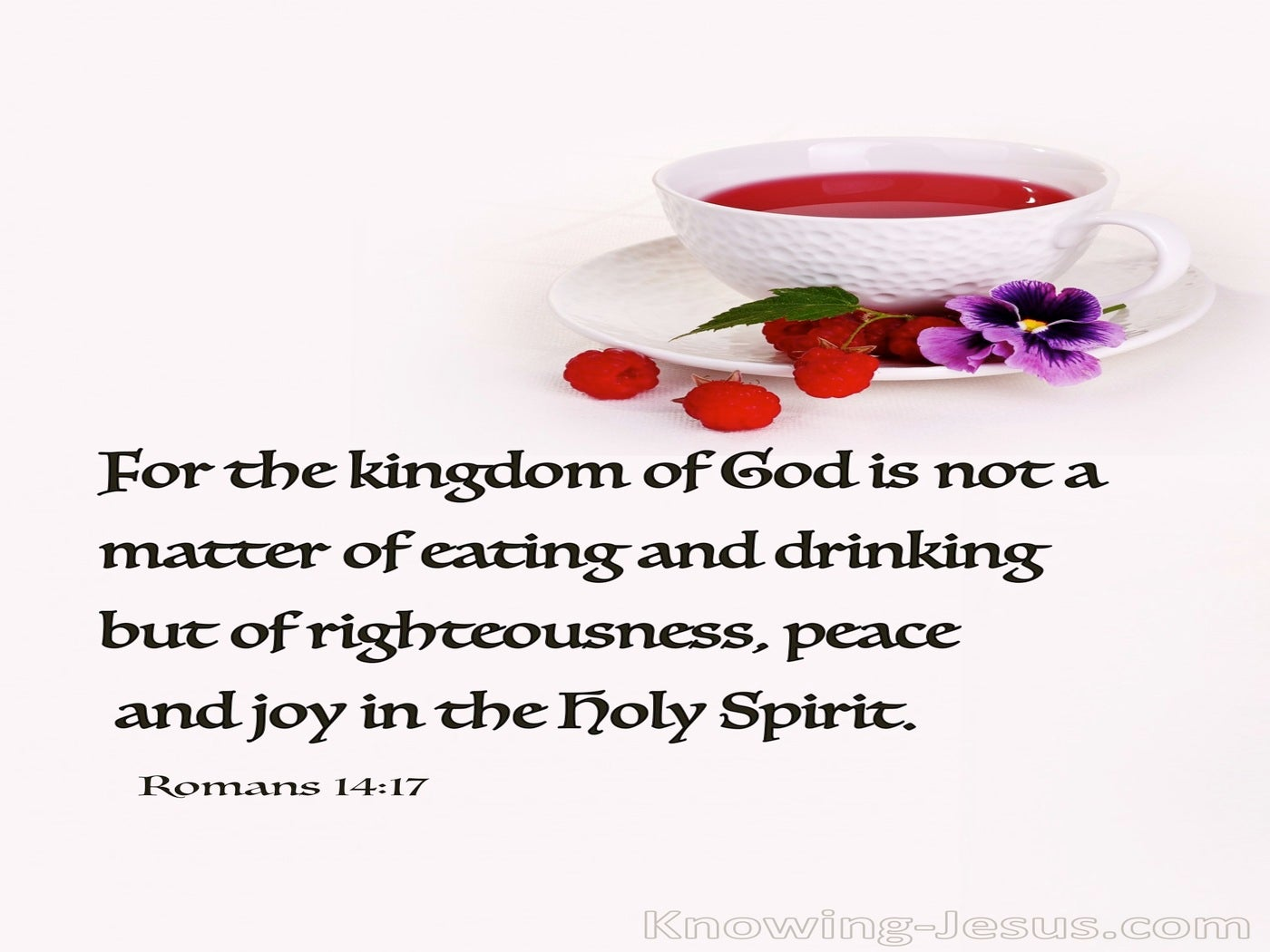 Romans 14:17 Righteousness Peace And Joy (pink)