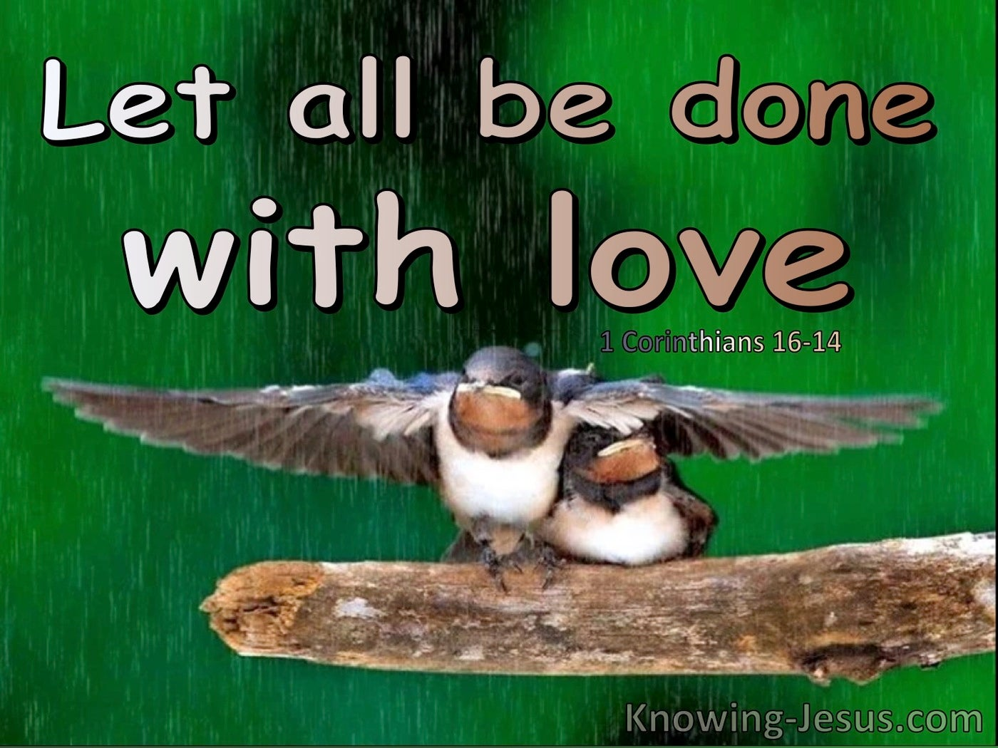 1 Corinthians 16:14 Let All You Do Be Done With Love (green)