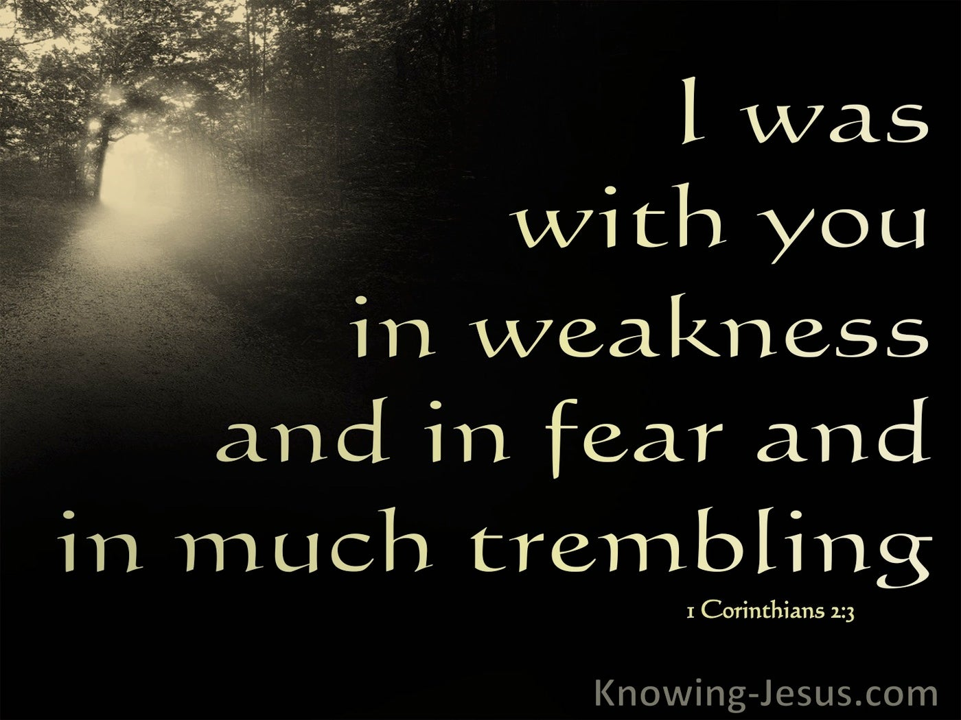 1 Corinthians 2:3 With You In Fear, Weakness And Trembling (brown)