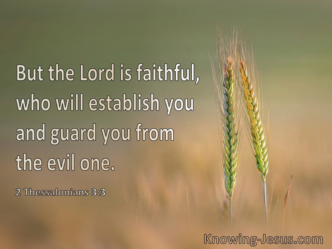 2 Thessalonians 3:3 The Lord Is Faithful He Will Establish You  And Guard You From The Evil One (green)