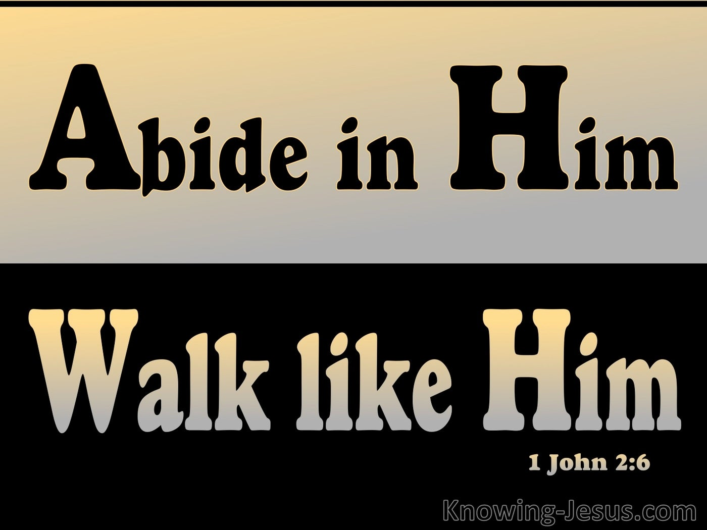 1 John 2:6 Abide In Him Walk Like Him (black)