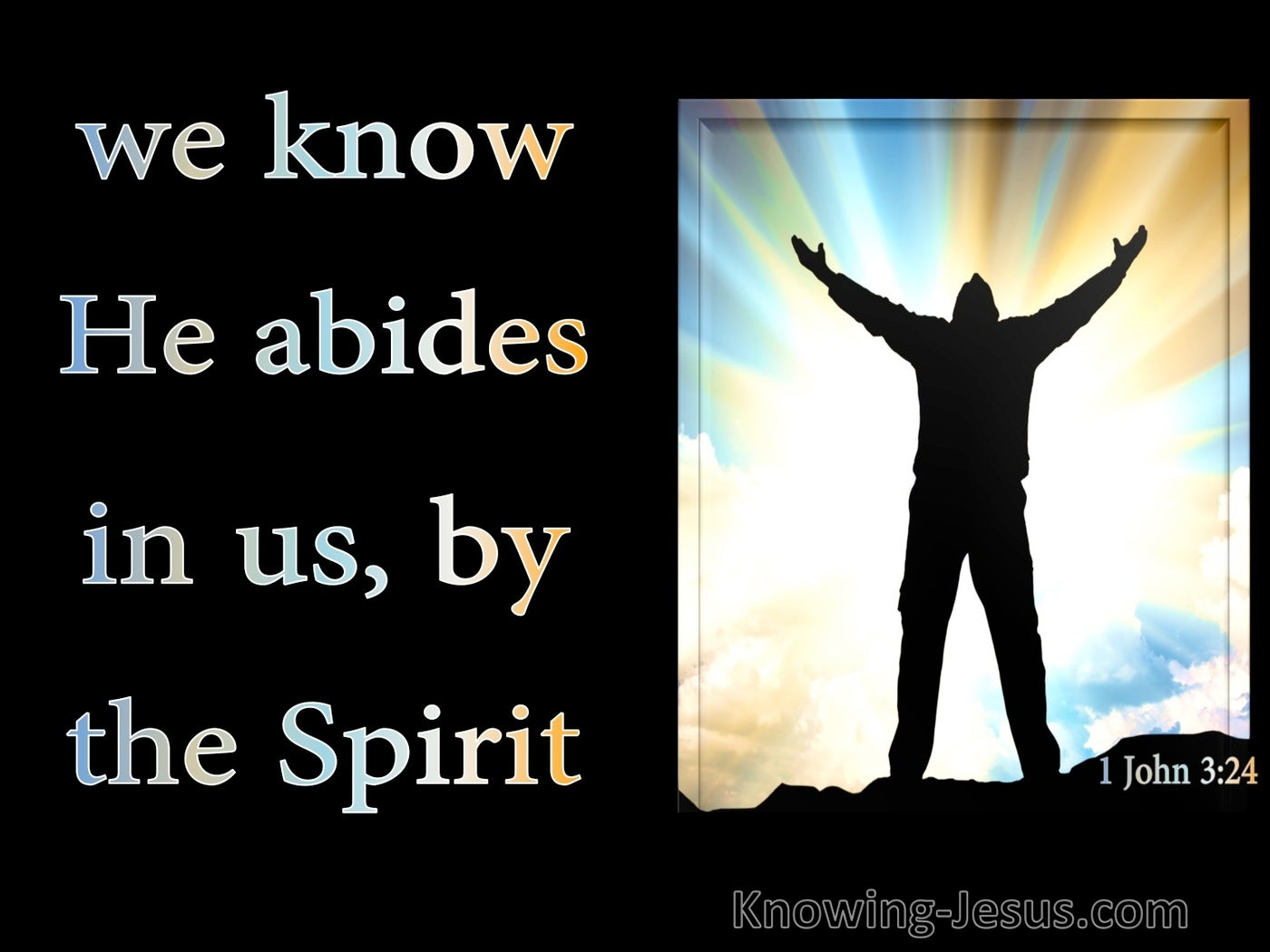 1 John 3:24 We Know He Abides In Us By The Spirit (black)