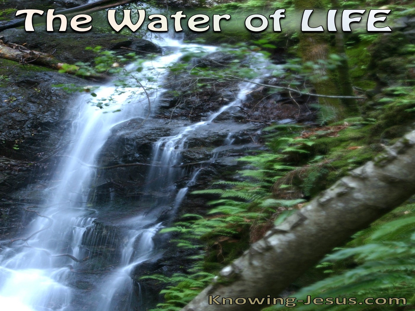 The Water Of Life (devotional) (blue)