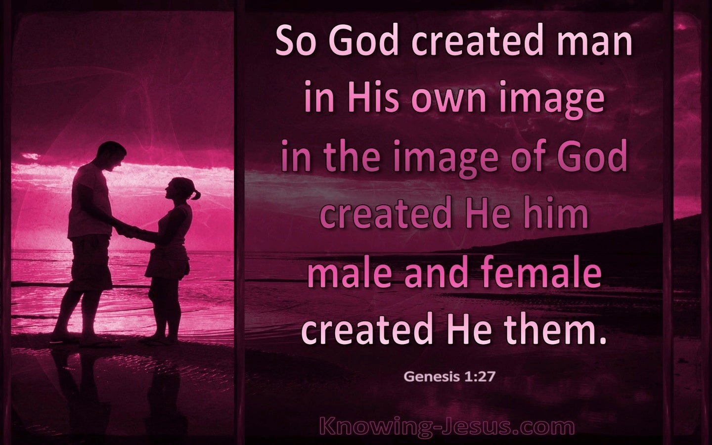 Genesis 1:27 God Created Man In His Own Image (pink)