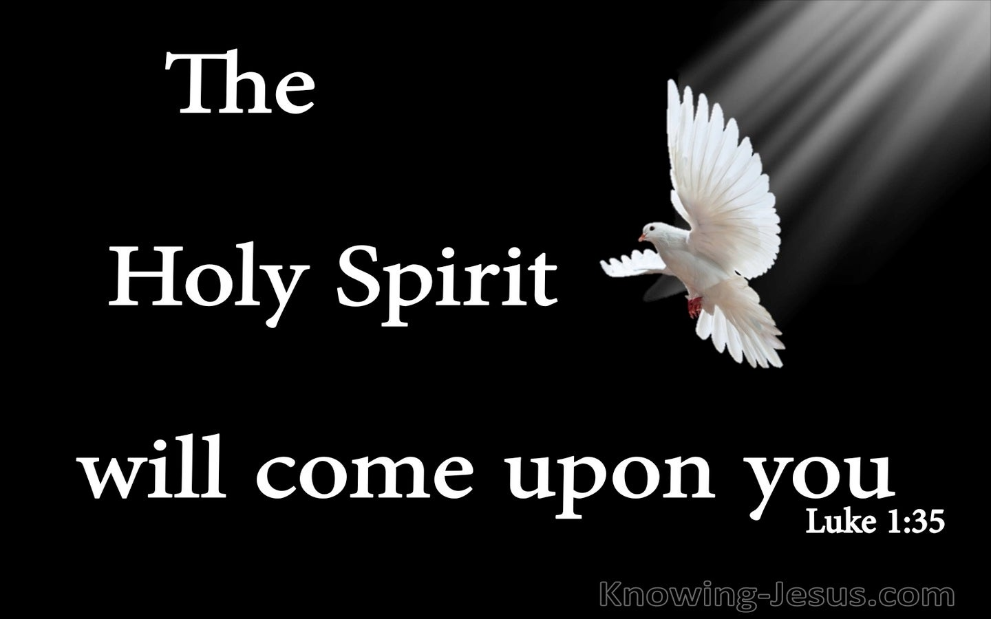 Luke 1:35 The Holy Spirit Will Come Upon You (black)
