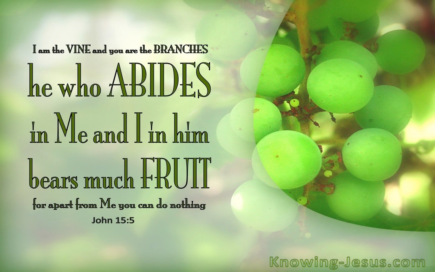 John 15:5 He Who Abide In Me Bears Much Fruit (green)