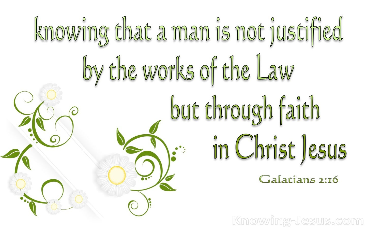Galatians 2:16 Justified By Faith (green)