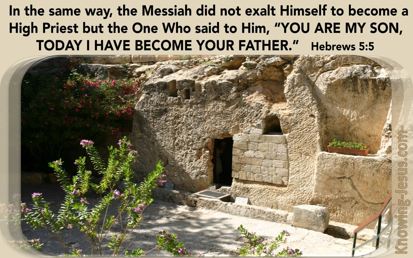 Hebrews 5:5 You Are My Son Today I Become Your Father (brown)