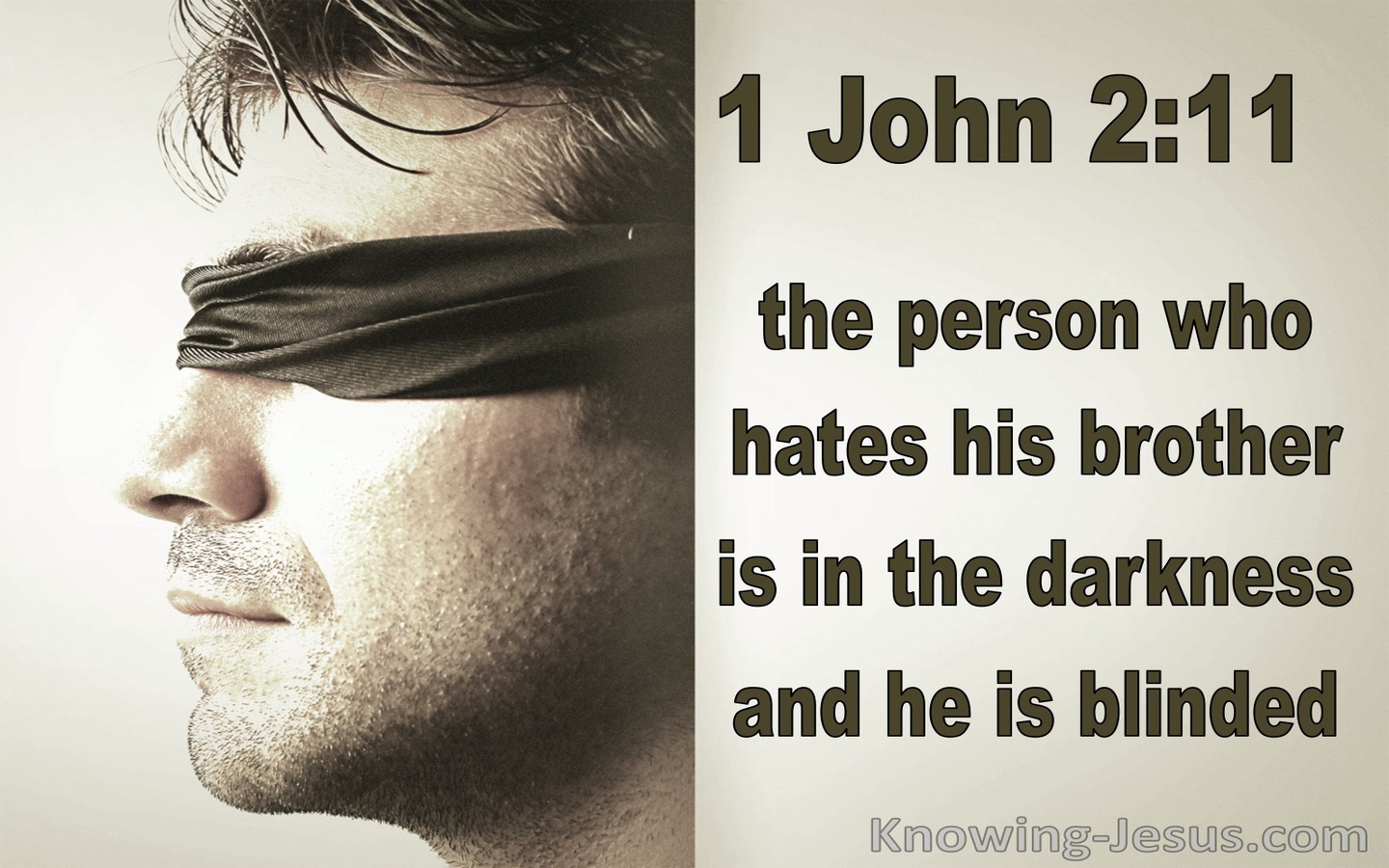 1 John 2:11 The Darkness Has Blinded His Eyes (brown)