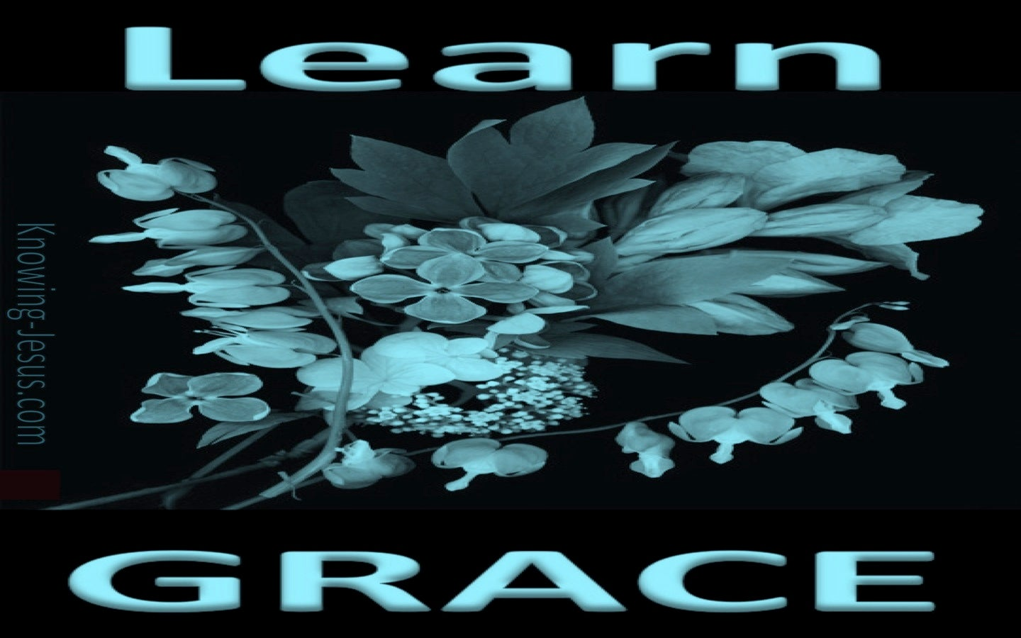 Training in Grace (devotional) (aqua)