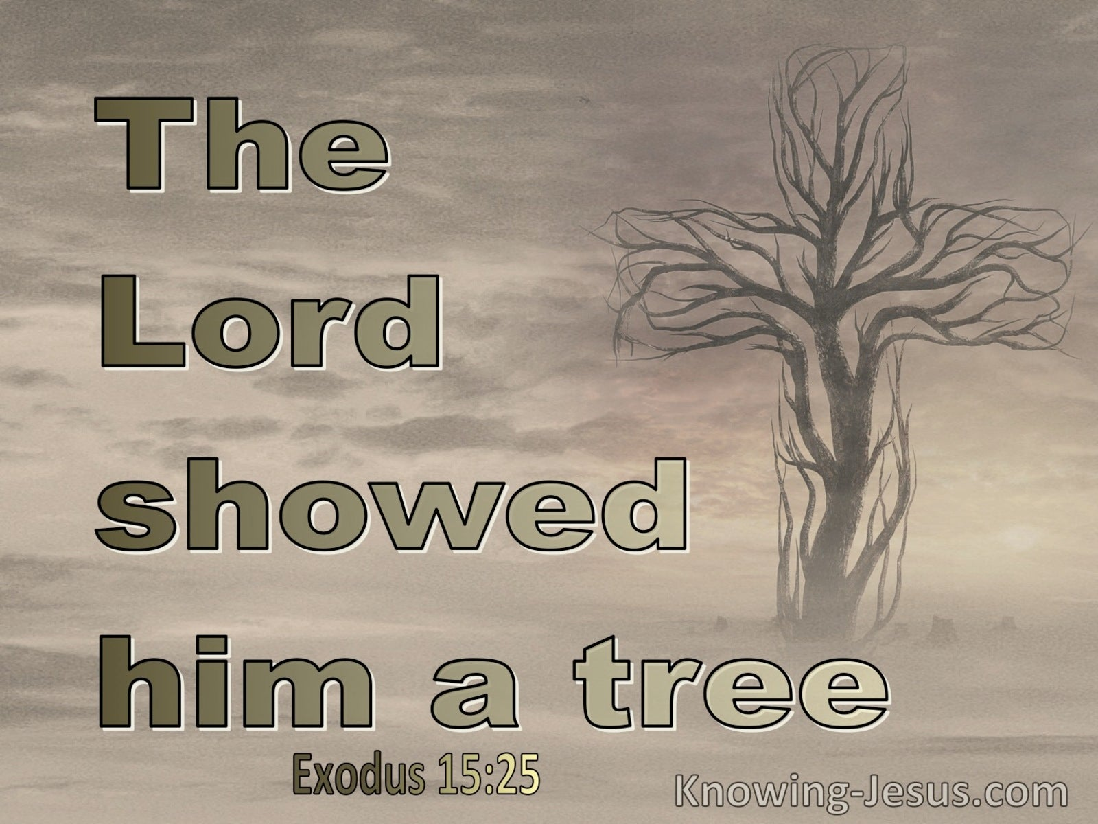Exodus 15:25 the Lord showed him a tree (beige)
