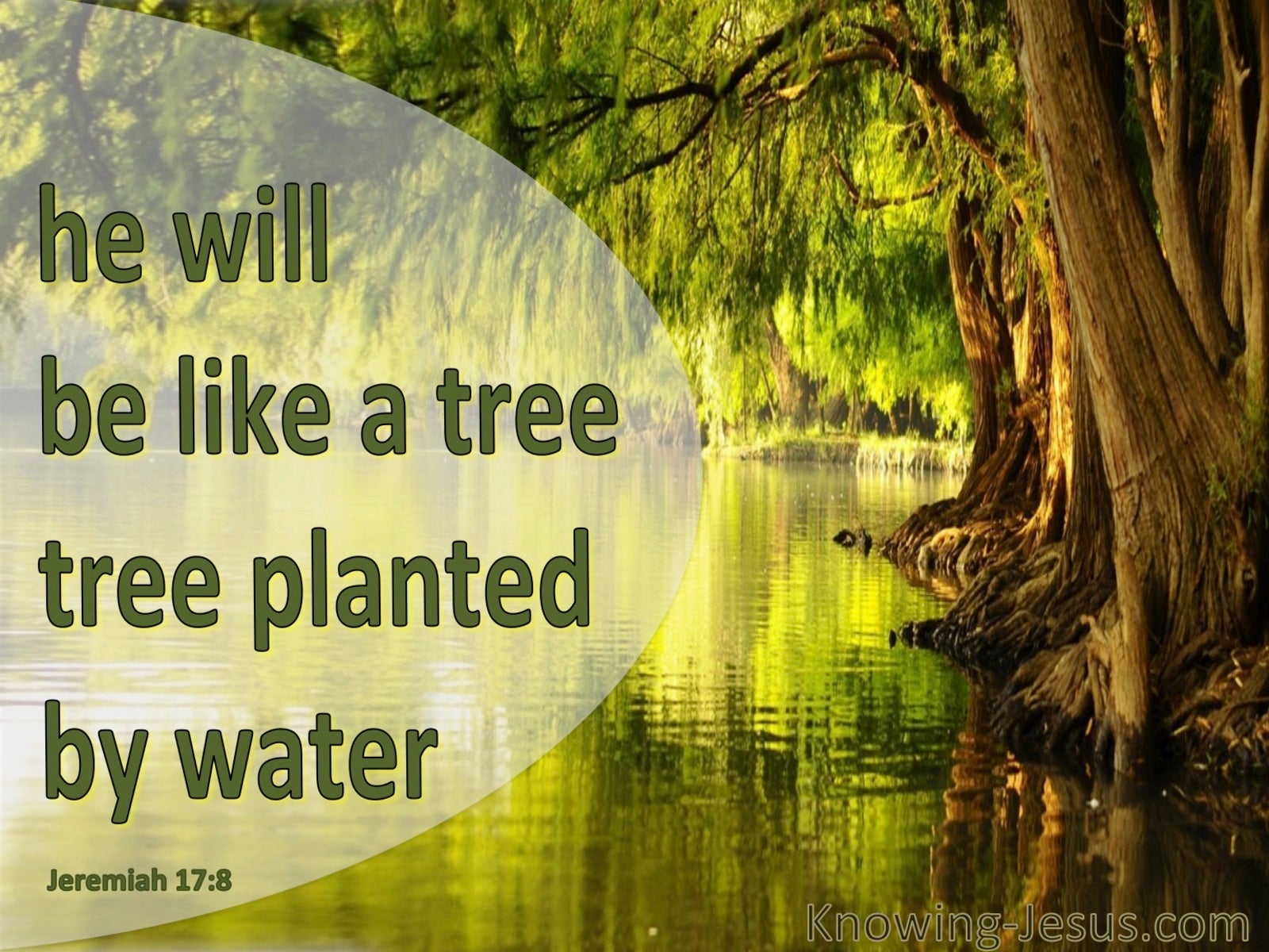 Jeremiah 17:8 He Will Be Like A Tree Planted (green)
