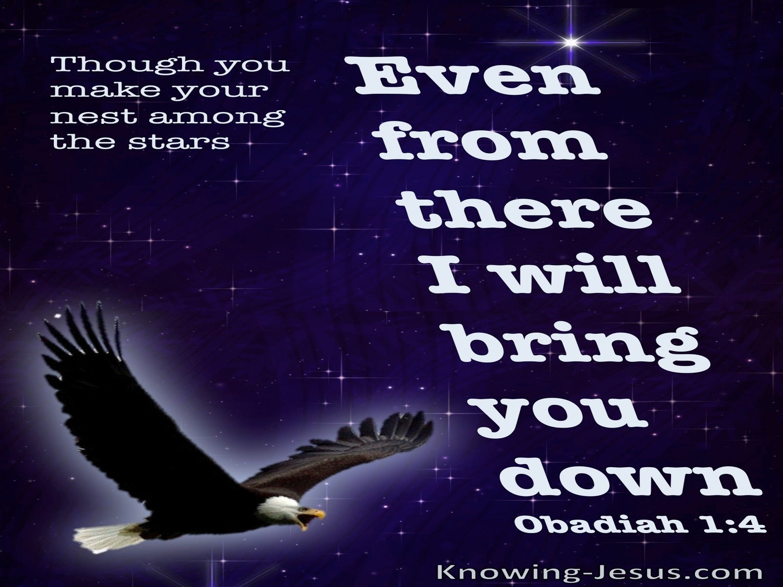 Obadiah 1:4 Though You Soar Like An Eagle Your Will Be brought Down (black)