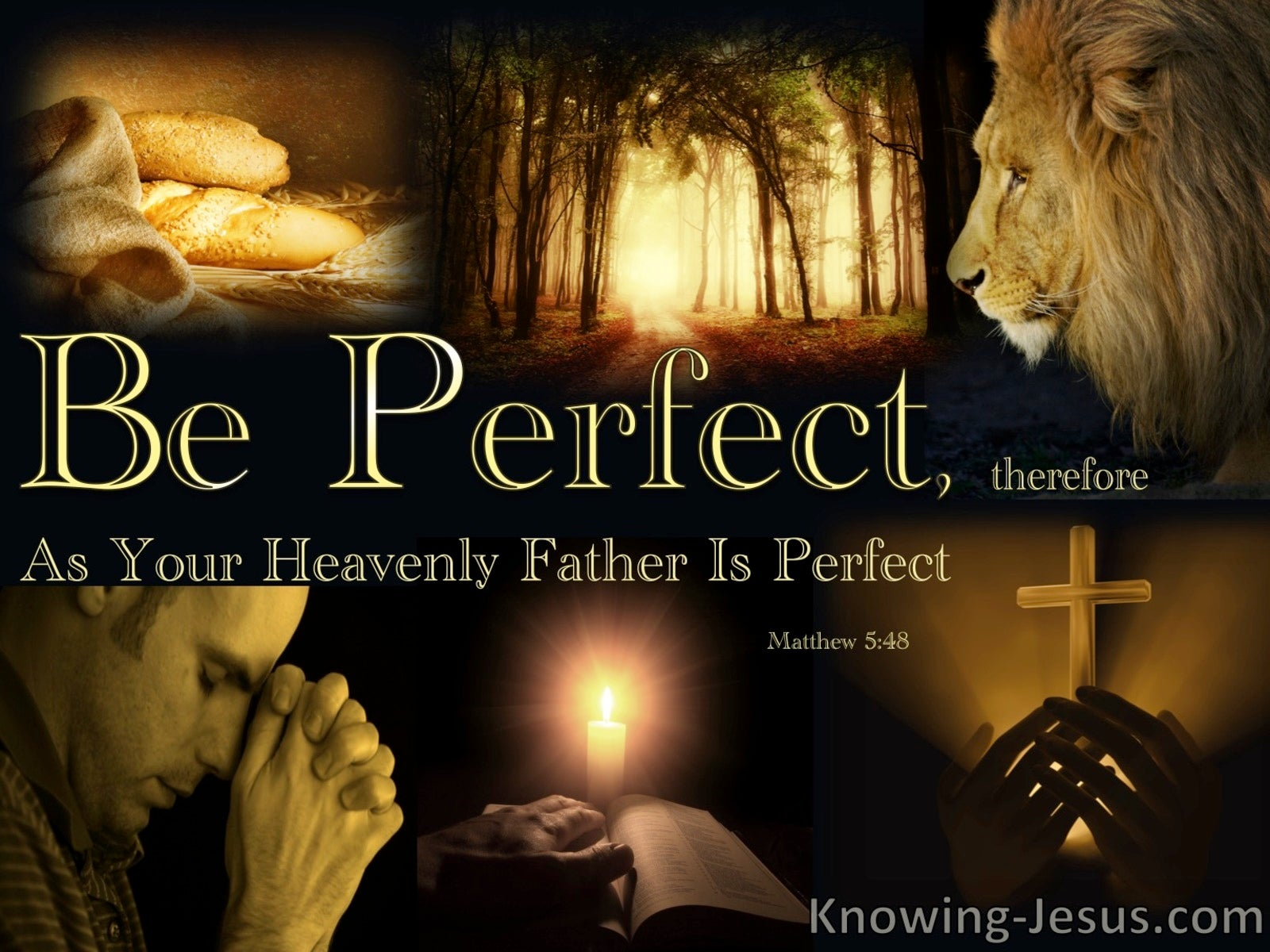 Matthew 5:48 Be Perfect As Your Heavenl Father Is Perfect (brown)
