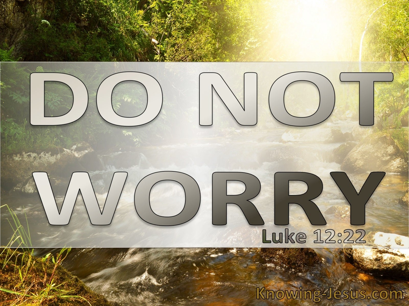 Luke 12:22 Do Not Worry About Your Life (gray)