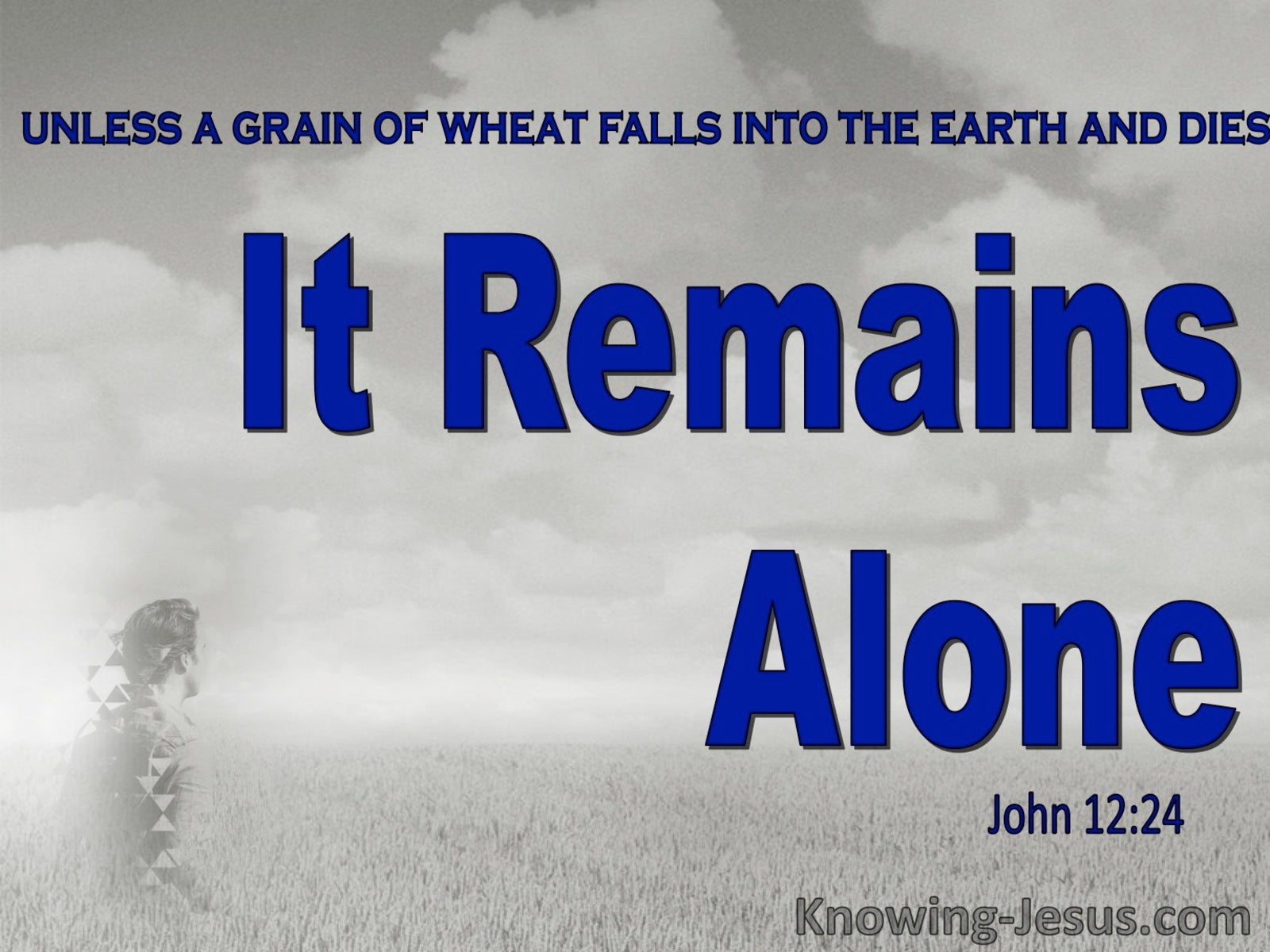 John 12:24 Unless A Grain Of Wheat Dies (blue)
