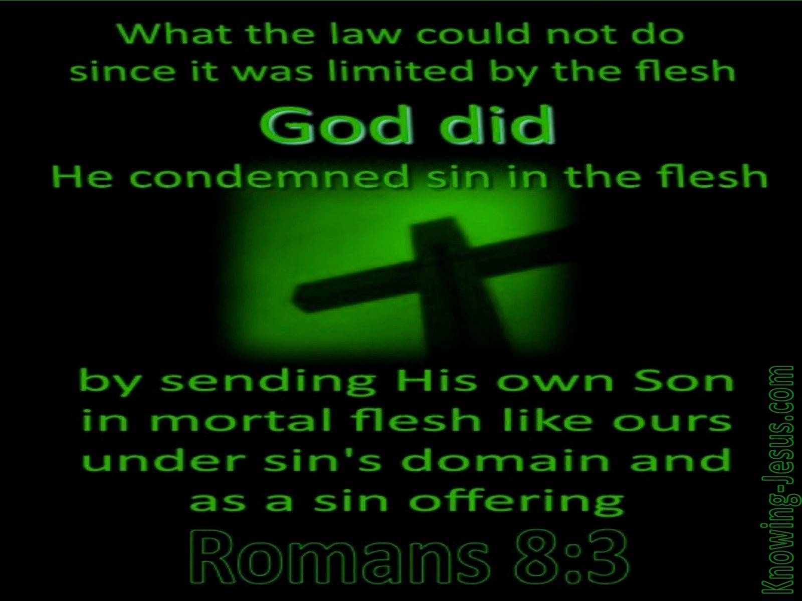 Romans 8:3 He Comdemned Sin In The Flesh (green)