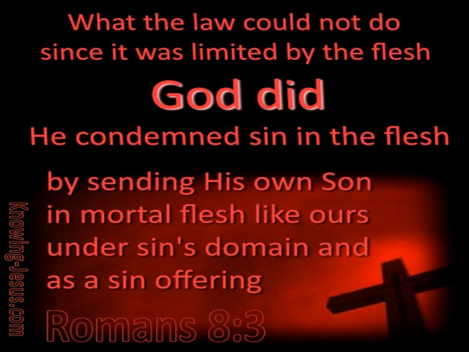 Romans 8:3 He Comdemned Sin In The Flesh (maroon)