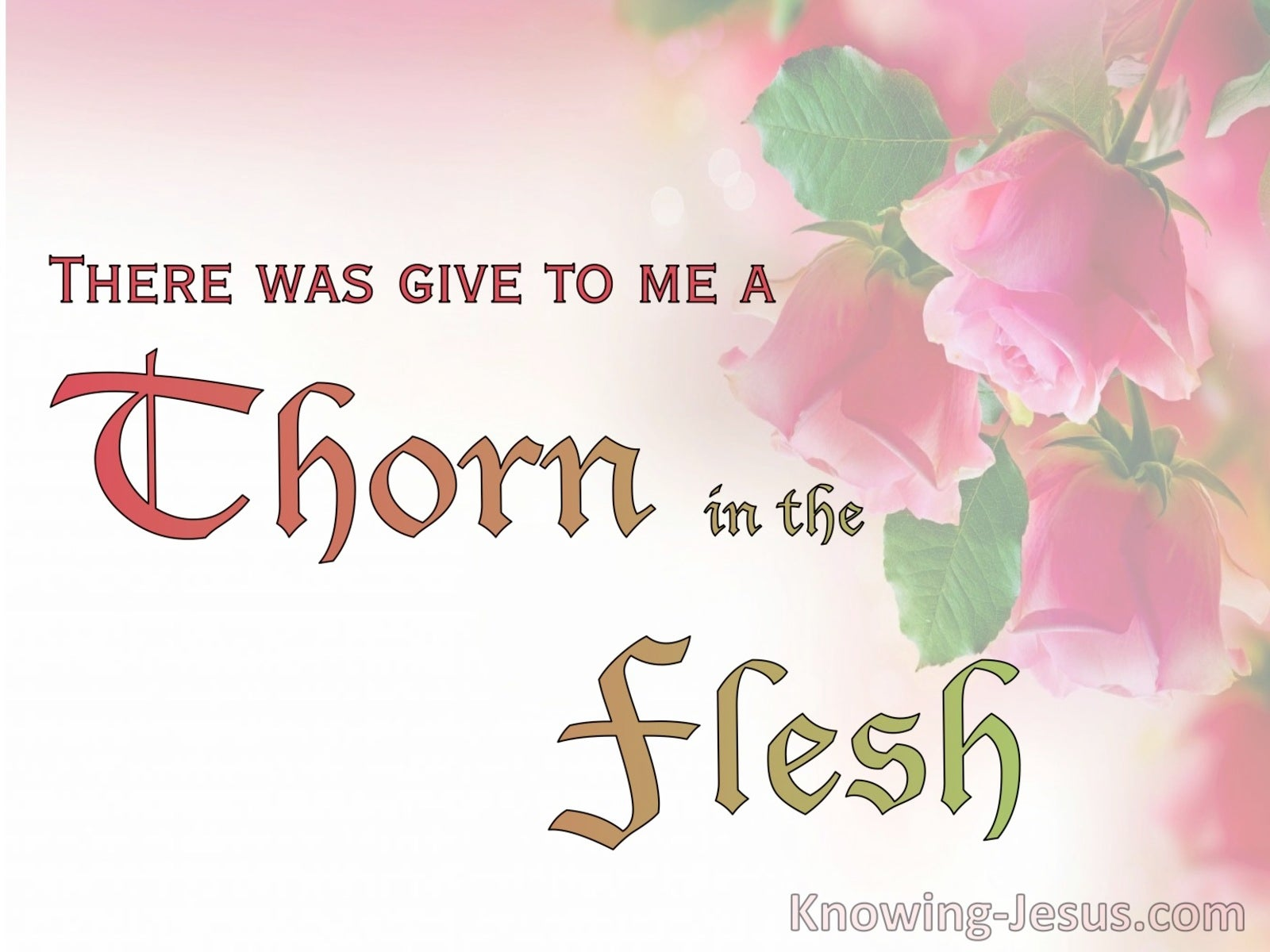 2 Corinthians 12:7 A Thorn In The Flesh (pink)