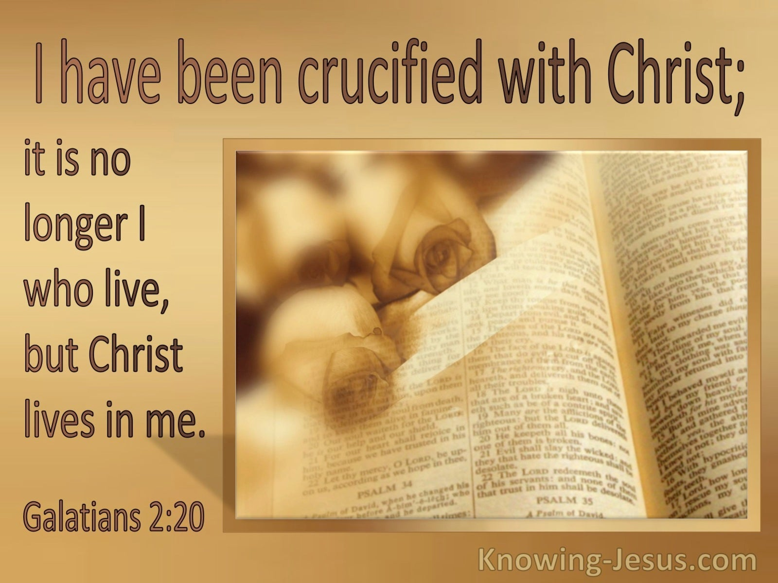 Galatians 2:20 Crucified With Christ (windows)08:13