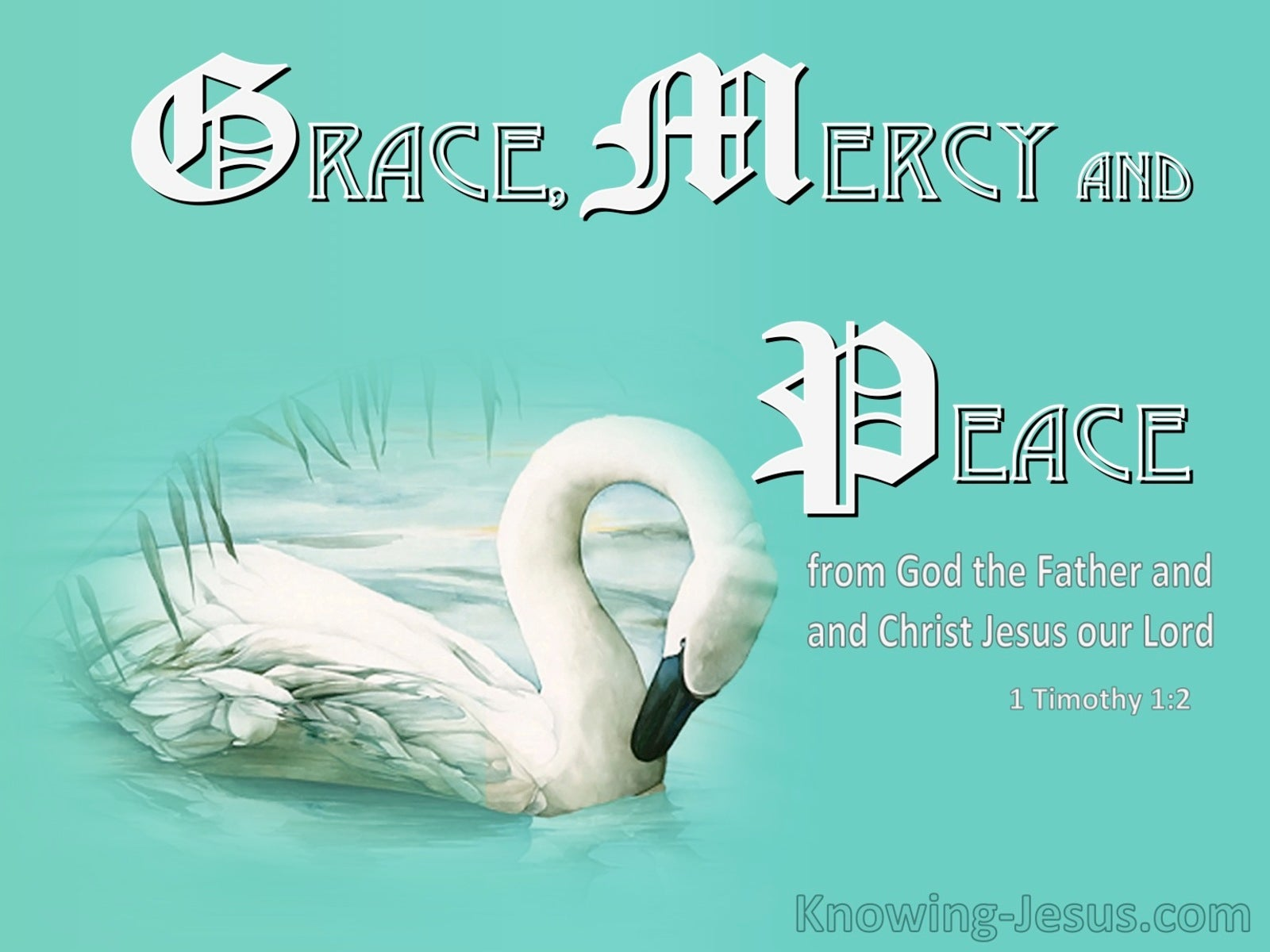 1 Timothy 1:2 Grace Mercy and Peace From God The Father And Christ Jesus (white)